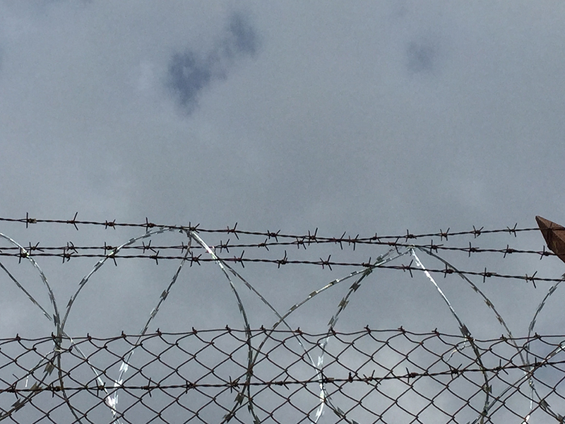 Photo of barbed wire.